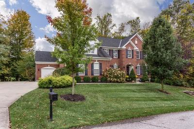 Clermont County Single Family Home For Sale: 3355 Greenfield Lane