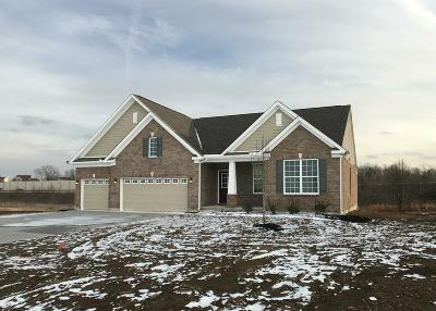 Butler County Single Family Home For Sale: 6945 Corkwood Knoll