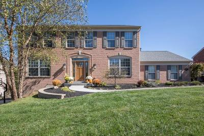 Clermont County Single Family Home For Sale: 839 Dorgene Lane