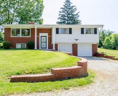 Clermont County Single Family Home For Sale: 645 Barg Salt Run Road
