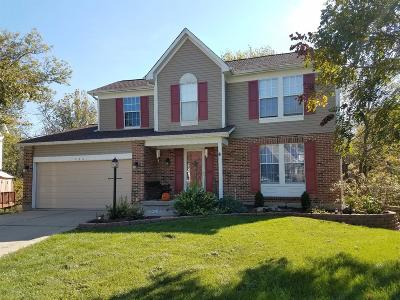 Clermont County Single Family Home For Sale: 4601 Laurel Ridge Court