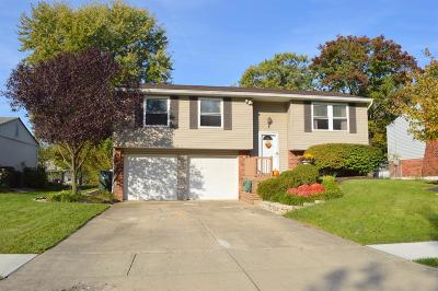Single Family Home For Sale: 763 Tradewind Drive