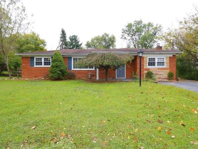 Single Family Home For Sale: 1007 Valley View Drive
