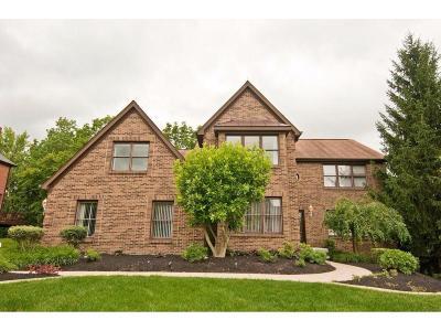Single Family Home For Sale: 8079 Eagleridge Drive