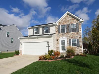 Fairfield Twp Single Family Home For Sale: 4158 Fairfield Falls Court
