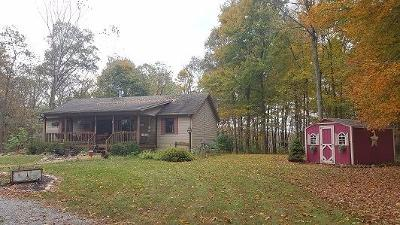 Adams County, Brown County, Clinton County, Highland County Single Family Home For Sale: 8785 Stoney Point Road
