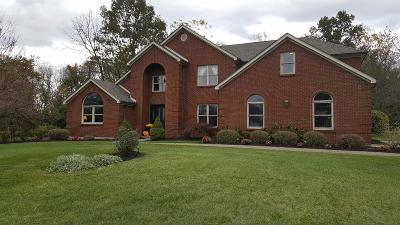 Single Family Home For Sale: 1656 Peach Tree Drive