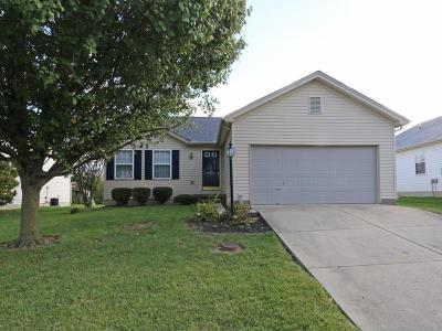 Single Family Home For Sale: 6524 Elissa Drive