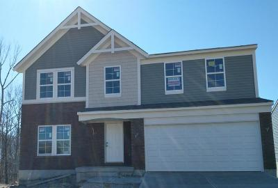 Whitewater Twp Single Family Home For Sale: 8908 Bluejay View Drive