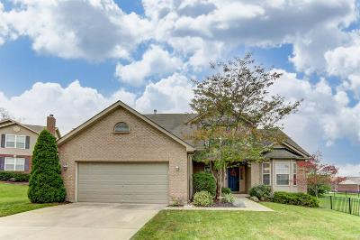 Single Family Home For Sale: 415 Thomas Pointe Court