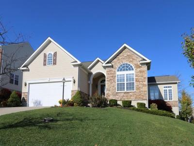 Single Family Home For Sale: 190 Brittony Woods Drive
