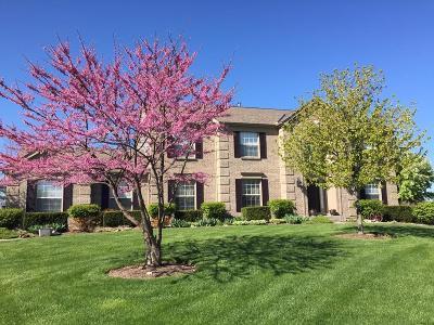 Single Family Home For Sale: 4197 Windrift Court