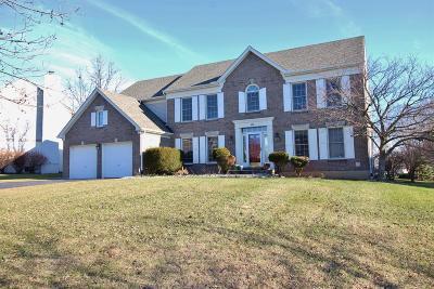 Single Family Home For Sale: 455 Vista Glen Drive