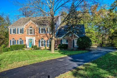 Single Family Home For Sale: 8091 Ashley View Drive
