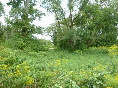 Residential Lots & Land For Sale: St Rt 136