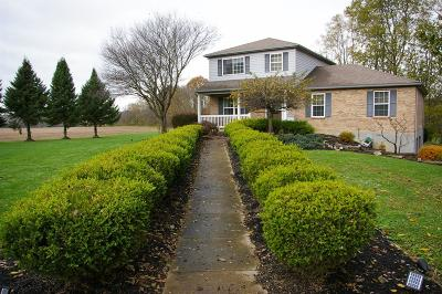 Adams County, Brown County, Clinton County, Highland County Single Family Home For Sale: 2606 Clarksville Road