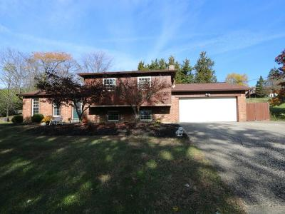 Single Family Home For Sale: 7330 Cherrywood Lane