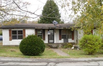 Adams County, Brown County, Clinton County, Highland County Single Family Home For Sale: 172 Jordan Street