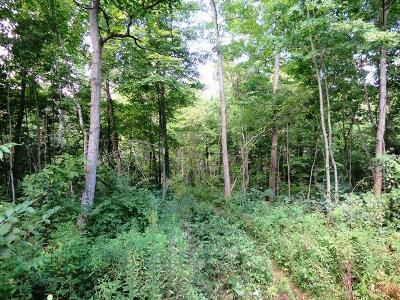 Adams County, Brown County, Clinton County, Highland County Residential Lots & Land For Sale: 535 Bolander Run Road
