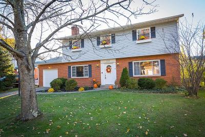Single Family Home For Sale: 1449 Tonopah Drive