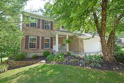 Single Family Home For Sale: 10221 Willow Drive