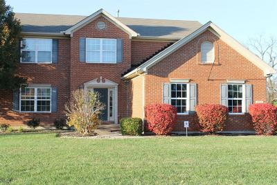 Single Family Home For Sale: 7208 Airy View Drive