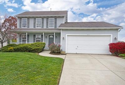 Single Family Home For Sale: 2972 Jamil Court