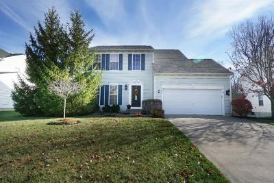 Single Family Home For Sale: 456 Cherry Hill Lane