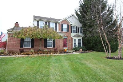Single Family Home For Sale: 417 Silverwood Farms Drive