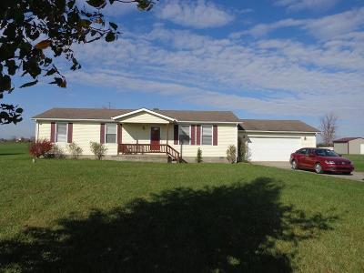 Adams County, Brown County, Clinton County, Highland County Single Family Home For Sale: 10339 Pausch Road