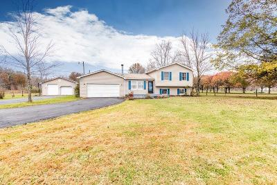 Mt Orab Single Family Home For Sale: 3590 West Greenbush Road