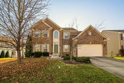 Clermont County Single Family Home For Sale: 6109 Southern Hills Drive