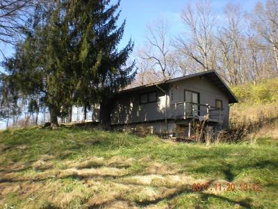 Colerain Twp Single Family Home For Sale: 7600 E Miami River Road