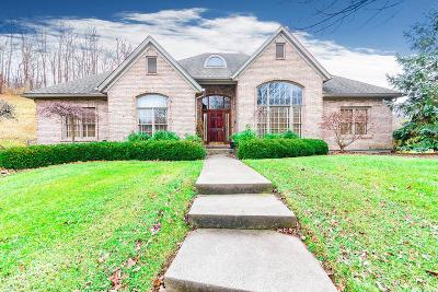 Hamilton County Single Family Home For Sale: 4980 Pebblevalley Drive