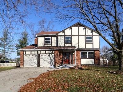 Hamilton County Single Family Home For Sale: 4162 Fox Hollow Drive