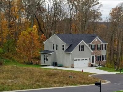 Clermont County Single Family Home For Sale: 683 Lake View Drive