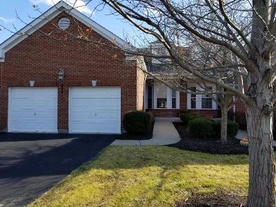 Hamilton County Condo/Townhouse For Sale: 8065 Paddington Lane
