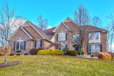Hamilton County Single Family Home For Sale: 8524 Ivy Trails Drive
