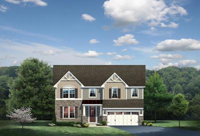 Hamilton County Single Family Home For Sale: 251 Fort Scott Boulevard