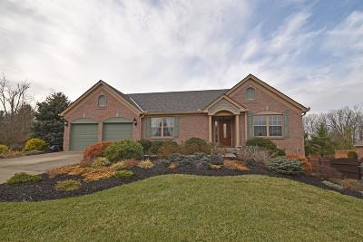 Clermont County Single Family Home For Sale: 528 Hopper View Bluff
