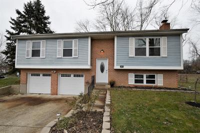 Clermont County Single Family Home For Sale: 4550 Eldywood Circle