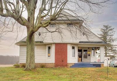 Georgetown Single Family Home For Sale: 9158 Mt. Orab Pike