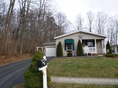 HILLSBORO Single Family Home For Sale: 126 Maple Run Drive