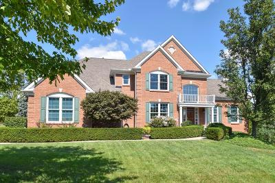 Single Family Home For Sale: 3251 Ivy Hills Boulevard
