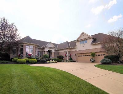 Single Family Home For Sale: 5155 Mountview Court