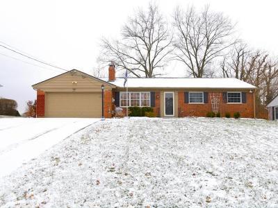 Single Family Home For Sale: 6171 Berkinshaw Drive