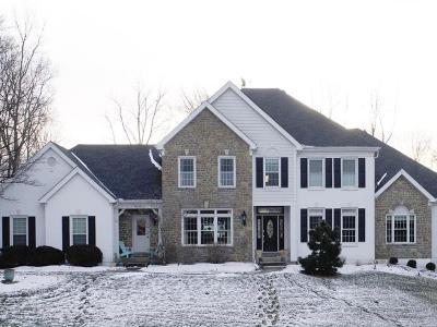Single Family Home For Sale: 584 Ridgestone Drive