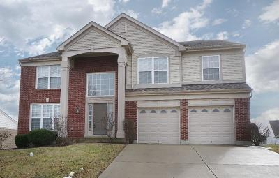 Single Family Home For Sale: 255 Briargate Drive