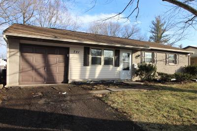 Single Family Home For Sale: 731 Mohican Drive