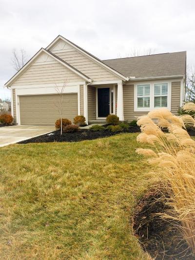 Single Family Home For Sale: 1568 Bear Lake Drive
